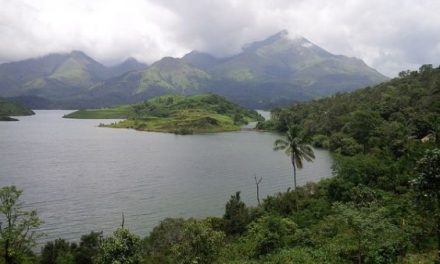 Mysore Wayanad Packages